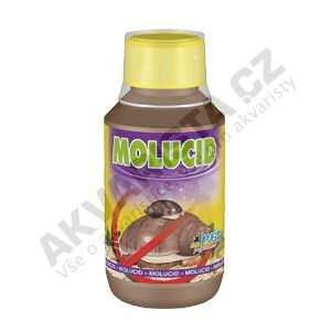 Dajana Molucid 500ml