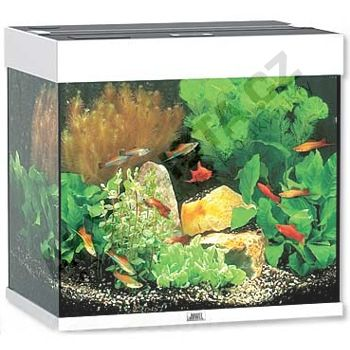 Juwel Lido 120 bílé, akvárium