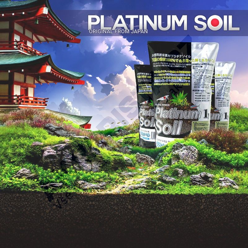 Platinum SOIL Normal 3l